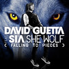 She Wolf (Falling to Pieces) [feat. Sia] - David Guetta